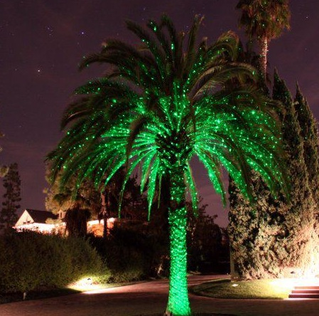Palm tree spright cropped for Palm projector
