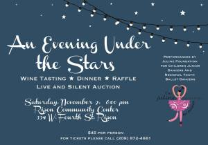 an evening under the stars Juline Foundation