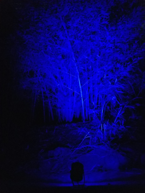 blue-16-color-led