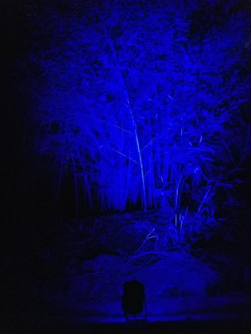 blue-16-color-led