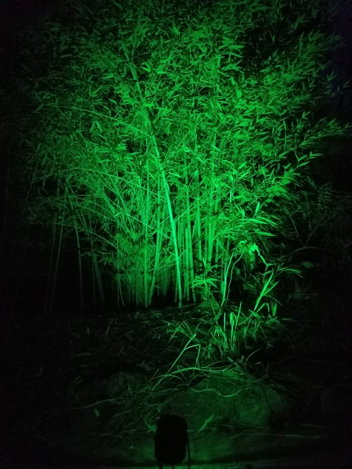 green-16-color-led