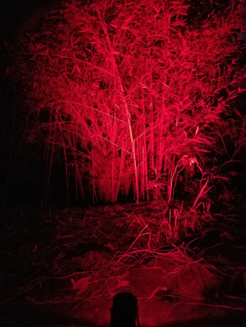 red-16-color-led