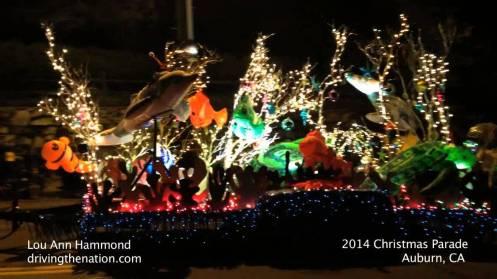 auburn-festival-of-lights